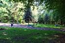park-miejski_10