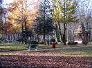 park-miejski_1