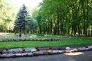 park-miejski_4