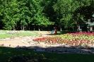 park-miejski_6