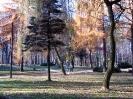 park-miejski_7