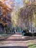 park-miejski_9